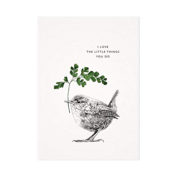 Winterkoning – Mélisse Prints – Illustraties en ansichtkaarten van dieren en planten, flora en fauna