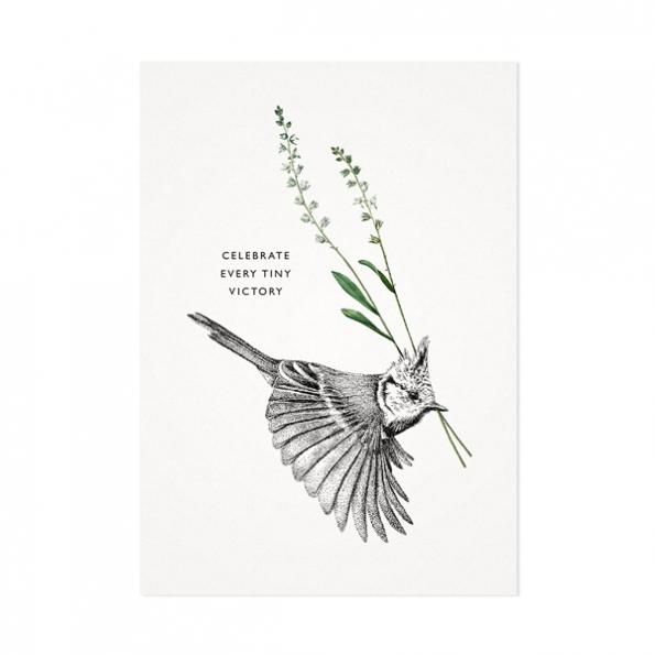 Kuifmees – Mélisse Prints – Illustraties en ansichtkaarten van dieren en planten, flora en fauna
