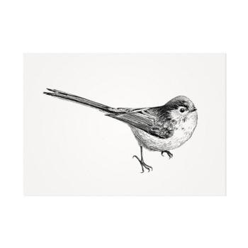 Staartmees – Mélisse Prints – Illustraties en ansichtkaarten van dieren en planten, flora en fauna